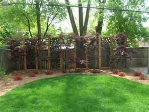 Landscape Ideas Backyard Privacy Landscaping For Privacy Per Website Quot This Privacy