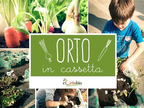 orto in cassetta cortobio frutta e verdura biologica tuo territorio
