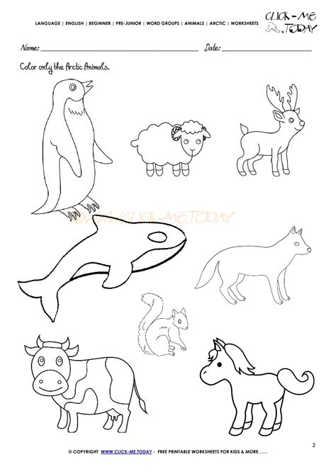 printable worksheets animals arctic animals worksheet activity sheet color 2