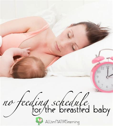 A Babys Shouldnt Start On Detox by The Breastfed Baby Should Not Be On A Feeding Schedule
