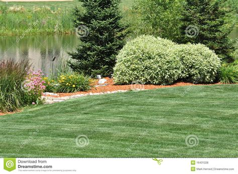 lawn free backyard backyard landscaping royalty free stock photos image 16431228