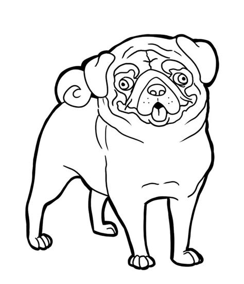 coloring pages of pugs dogs pug pug funny face coloring page art pinterest