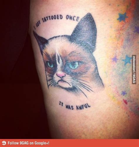 cat tattoo meme 47 best cattoos images on pinterest cat tattoos kitty