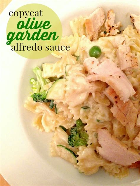 Copycat Olive Garden Alfredo Sauce by Copycat Olive Garden Alfredo Sauce Southern Savers