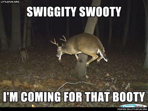 That Booty Meme - swiggity swooty i m coming for that booty deer funny