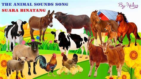 animal sounds song lagu suara binatang  lirik
