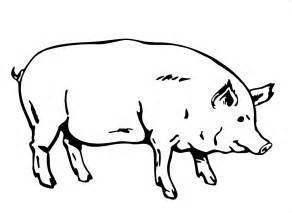 pig coloring page free printable pig coloring pages for