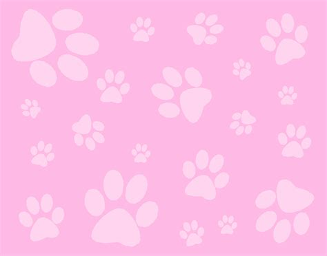 paw background pink paws background