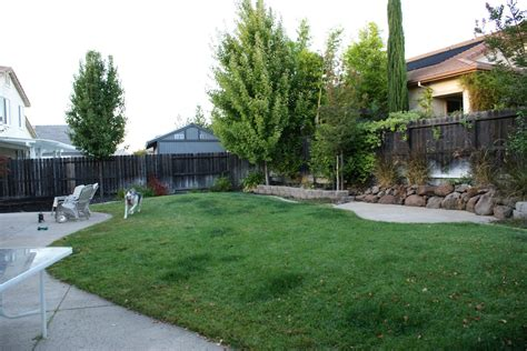 simple backyard garden ideas photograph backyard layout si
