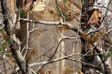 Camoform Real Tree Ap Quality realtree camouflage wallpaper this wallpapers