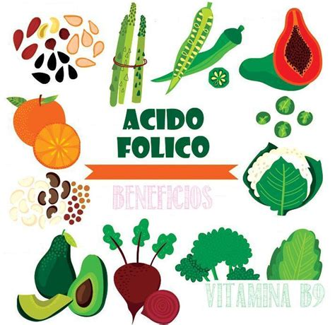 alimentos vitamina b9 9 beneficios de la vitamina b9 acido folico