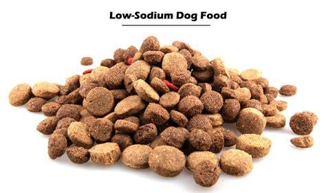 low sodium dogs how to select the best food for your food selection
