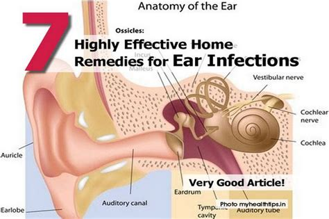 loud ringing noise in one ear tinnitus as a symptom of