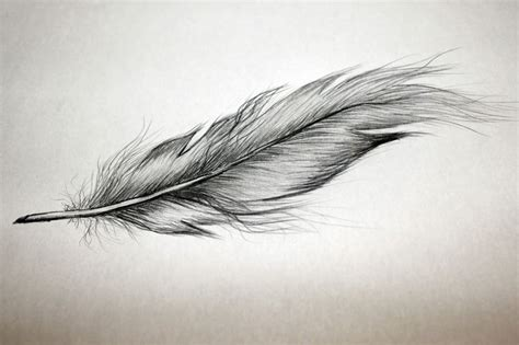 17 Best Ideas About Feder 17 Best Ideas About Quill On Feather
