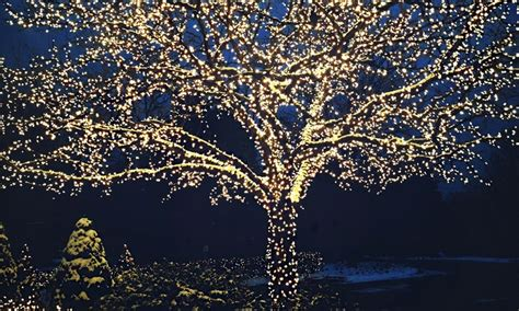 17 Meter White LED Solar Powered Fairy Lights   Groupon