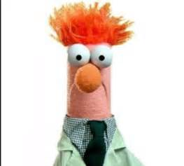 beaker muppet images amp pictures becuo
