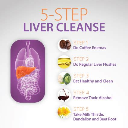 How Does It Take A To Detox by How Does It Take To Clean Out Your Liver Thecarpets Co