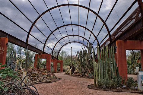Desert Botanical Garden Coupon Desert Botanical Garden Coupon 2015 Best Auto Reviews