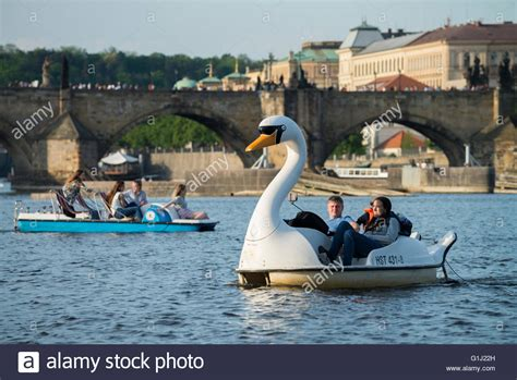 paddle boats on the vltava river a swan pedal boat with tourists on the river vltava