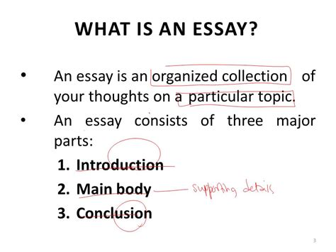 essays introduction examples example of self introduction essay