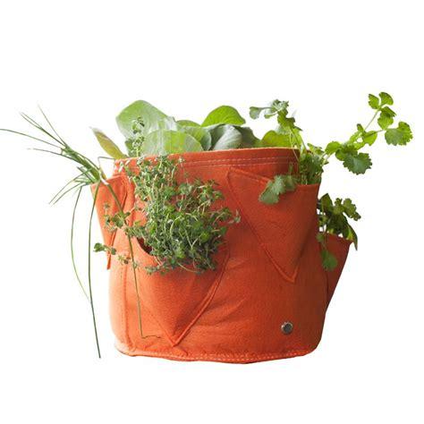 vasi per erbe aromatiche vaso per erbe e piante aromatiche in tessuto bloembagz