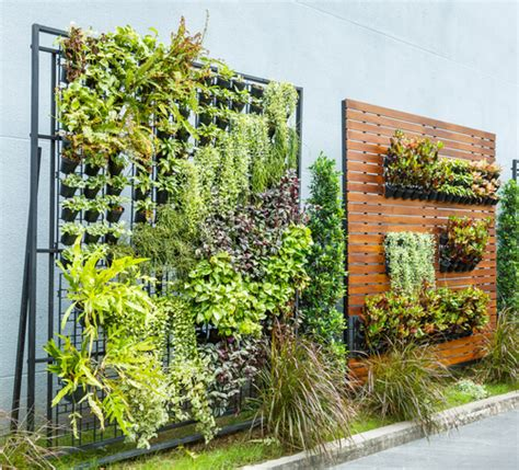 Vertical Garden On Fence Grow Up With 15 Creative Ideas For Vertical Gardening