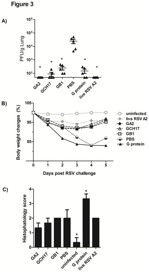 g protein rsv image jpeg