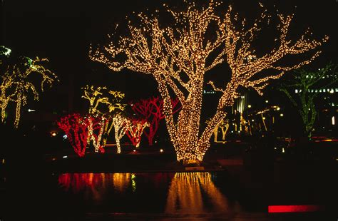 christmas light installation dallas fort worth texas