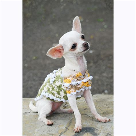 chihuahua puppy clothes chihuahua clothes unique crochet clothes rustic by myknitt