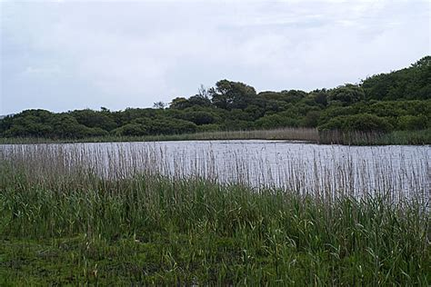 great pool tresco great pool from the western hide 169 rostron cc