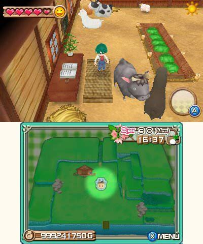 Harvest Moon A New Beginning Fishing Shed harvest moon a new beginning 3ds review any