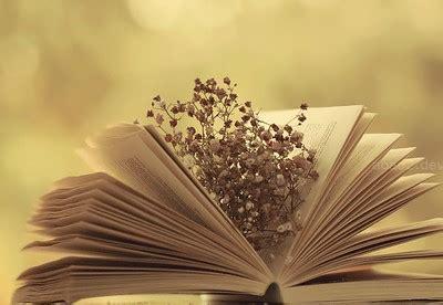 imagenes de rosas sobre libros d 237 a de flores libros y ra 237 ces radiombligo