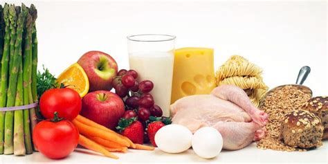 un alimentazione corretta 5 regole per una corretta alimentazione best5 it