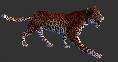 Gamis Leopard leopard image school strategy mod db