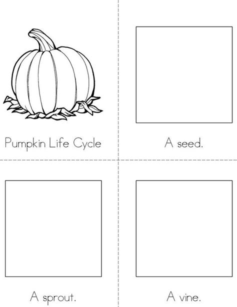 life cycle of a pumpkin coloring page pumpkin life cycle book twisty noodle