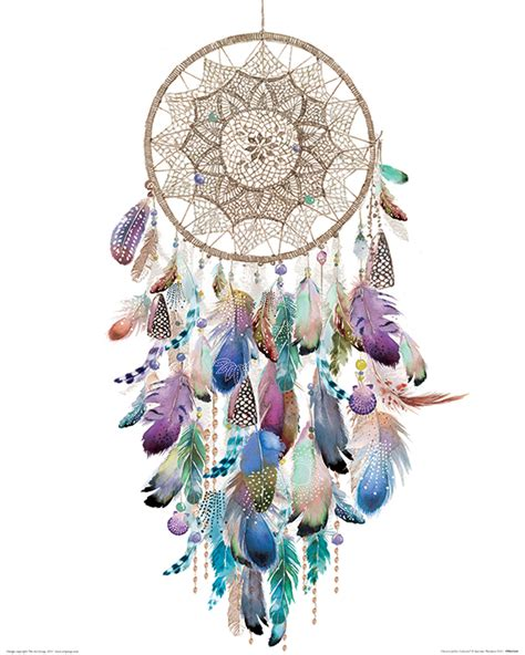 summer thornton summer thornton dreamcatcher colourful canvas print