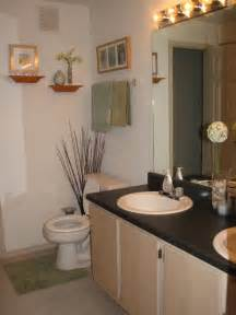 lovely apartment bathroom decor 4 bathroom decor ideas for apartments decorating small home