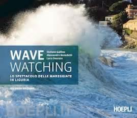 libro the waves wave watching benedetti alessandro gallino stefano onorato luca hoepli libro hoepli it
