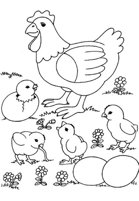 imagenes de animales de granja para colorear free coloring pages of ciclo de vida planta
