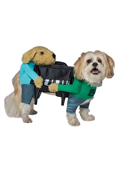 dogs as pets dogs carrying piano costume for pets