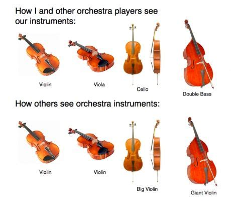 the string section how musicians see the string section vs how others see the