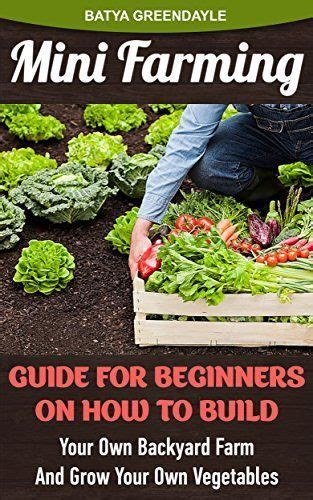 How To Make Your Own Vegetable Garden Mini Farming Guide For Beginners On How To Build Your Own