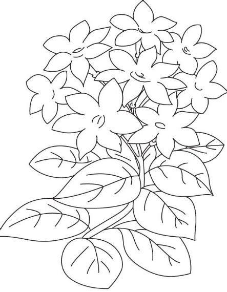 contoh gambar bunga  mudah digambar simak gambar berikut