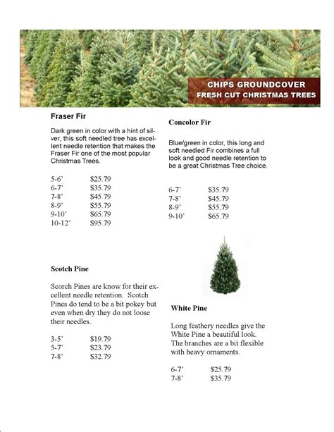 tree prices 2014 28 images compare tree prices 28