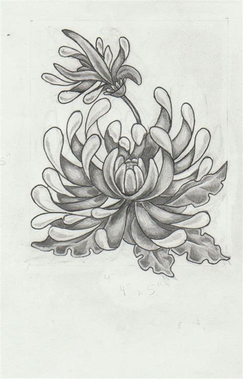 chrysanthemum flower tattoo chrysanthemum design by mashamanya deviantart