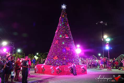 what tree holds lights better san pedro town council holds lighting of tree ambergris today breaking news lates