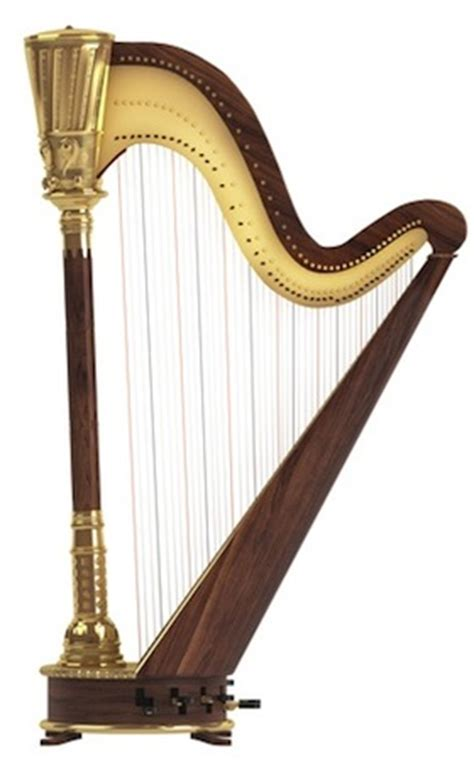 Harmonika Pitch Instrument chapter 2 musical instruments
