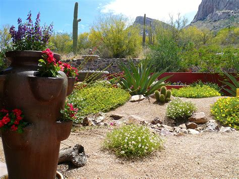 Design Ideas For Small Spaces landscape design and construction by sonoran gardens inc
