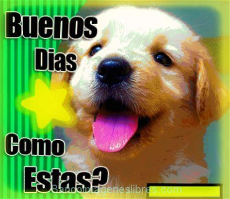 Imagenes Y Mensajes Tiernos De Buenos Dias | fotos de perritos tiernos con frases de buenos d 236 as