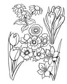 Fleurs Dessins Az Coloriage